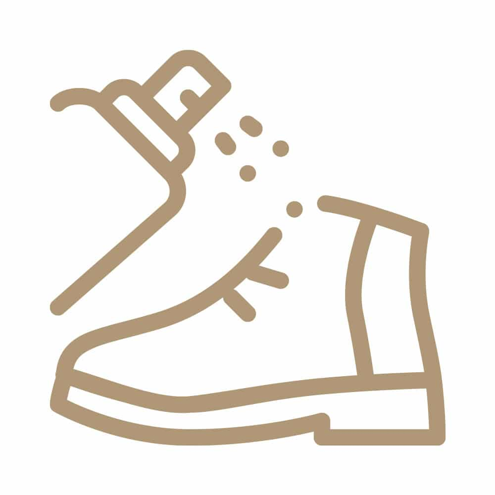 shoe odor removal service
